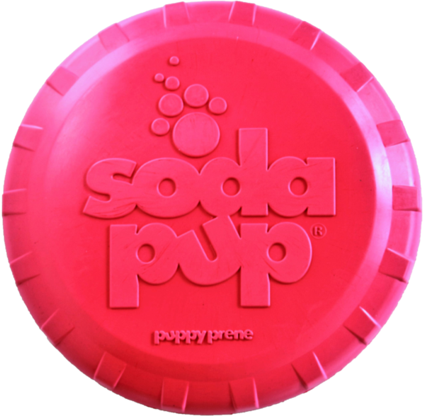 Bottle Top Puppy Frisbee